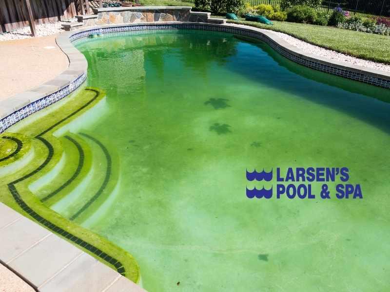 green-pool-water